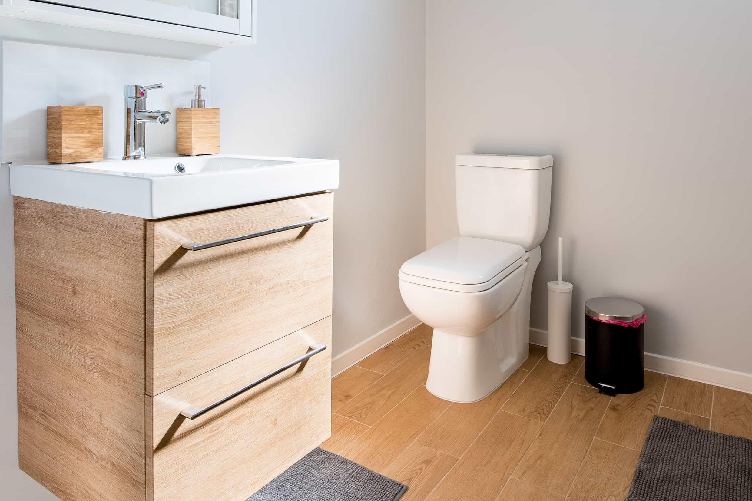 best toilet seat bidet