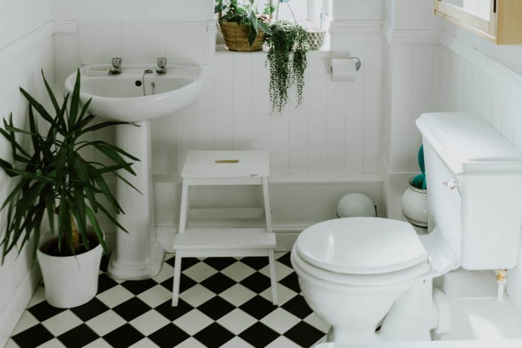 The Best Two Piece Toilet Traditional Style For A Bargain