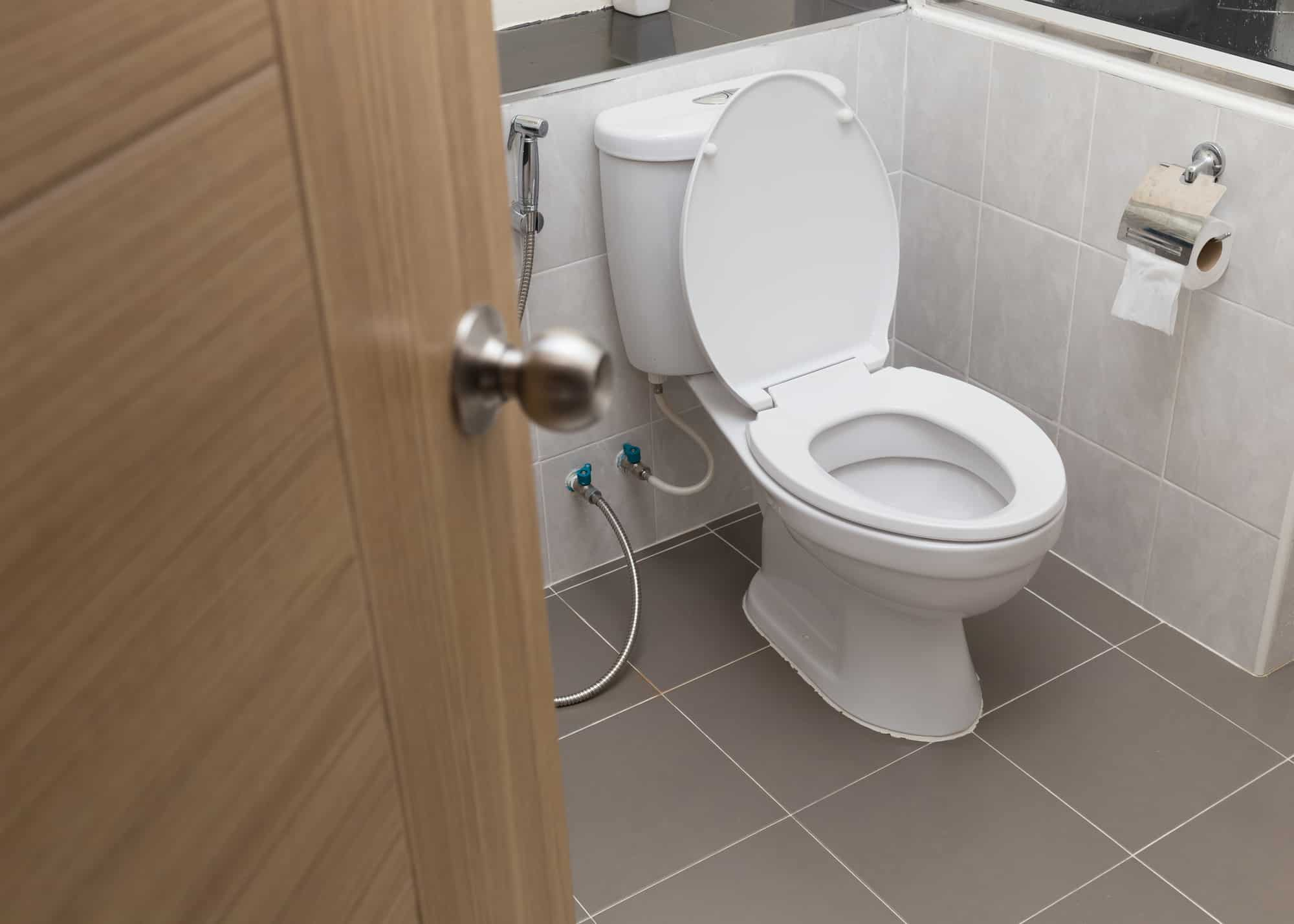 what's the best toilet to buy