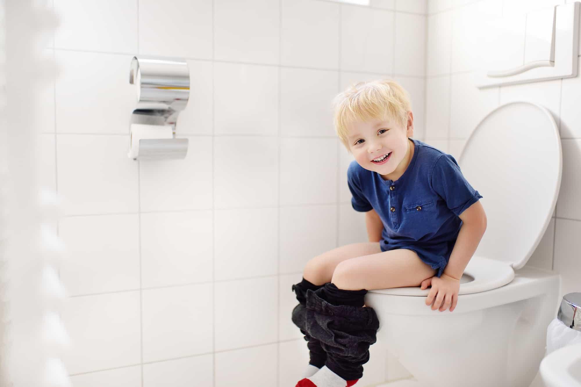 best toilet seat for toddler boys